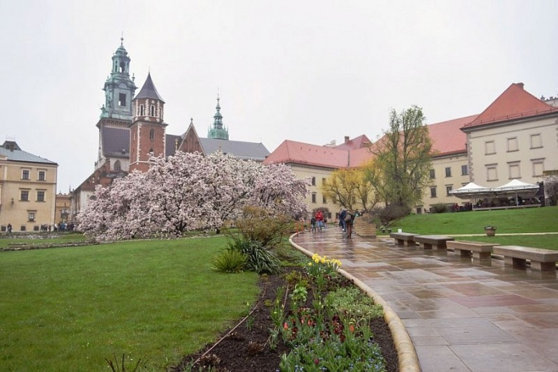 Kraków in the rain