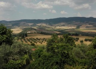 Panorama from Contignano