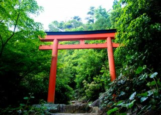 Torii: The Structure of Japan