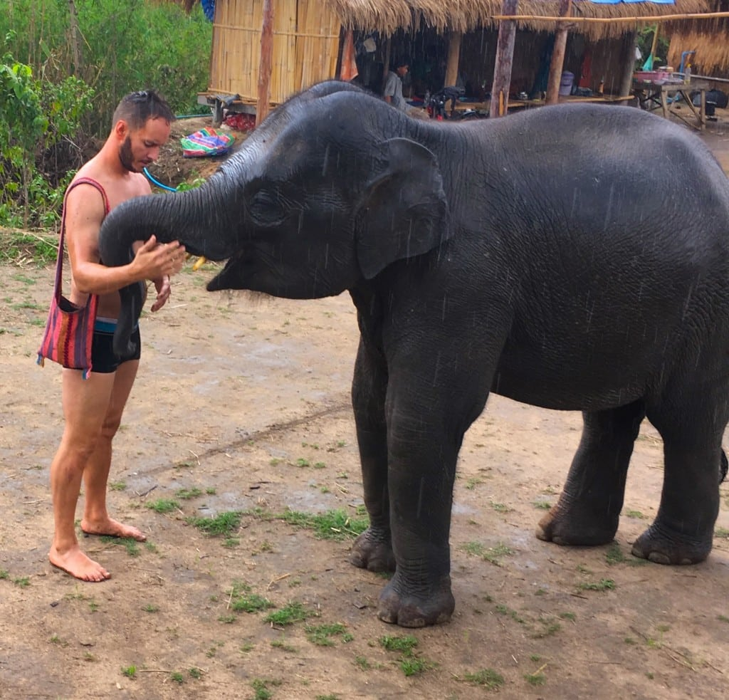 Post-bath goodbye to my baby elephant friend before returning to Chiang Mai.