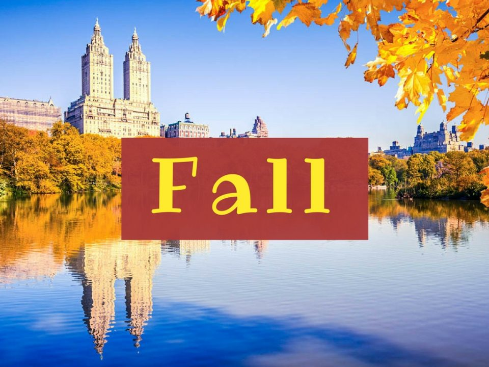 NYC in Fall - Global Storybook