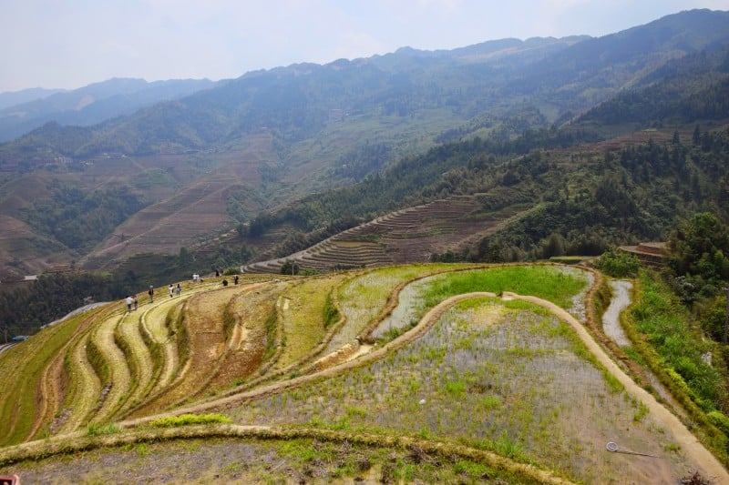 Longji Rice Terraces, Guilin, China - Global Storybook