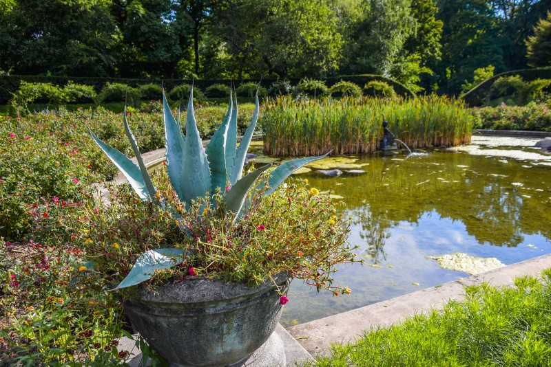 Brooklyn Botanic Garden in Summer, New York City - Global Storybook