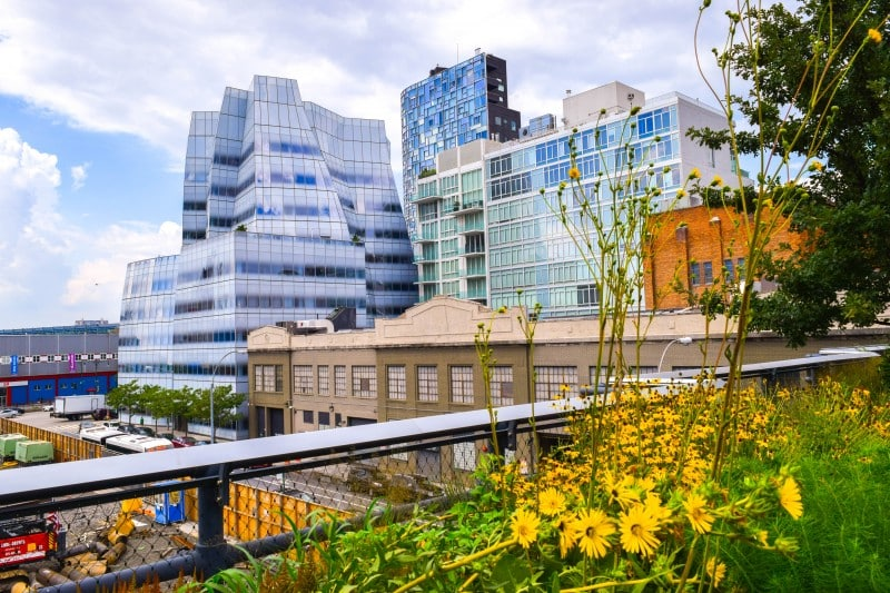 The High Line Park, New York City - Global Storybook