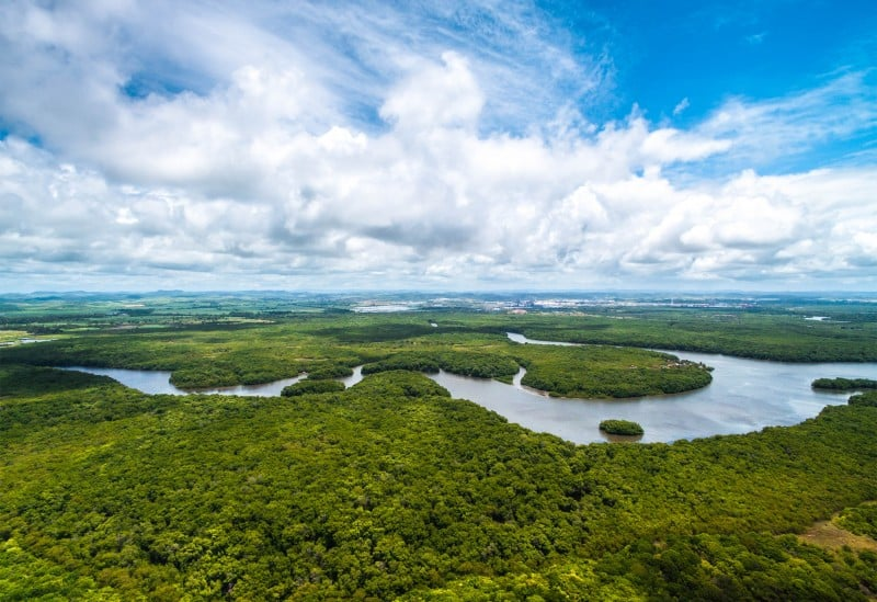 Amazonas Brazil - Global Storybook