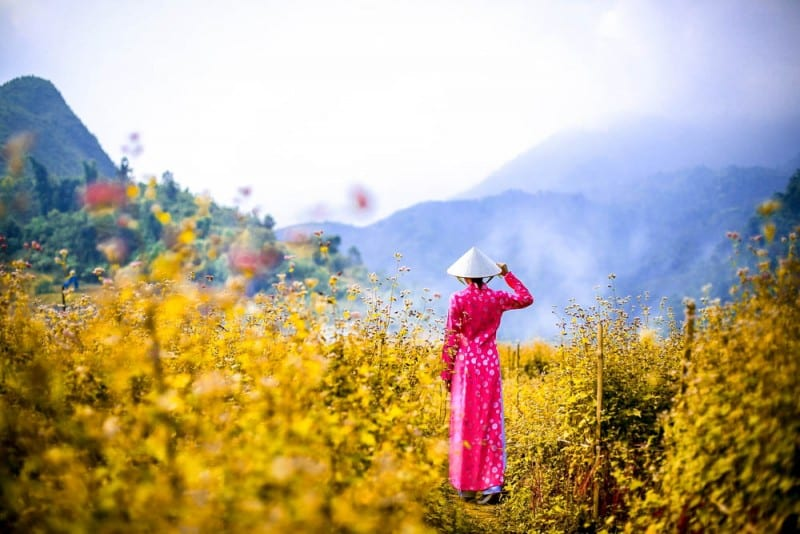Ao Dai costume, Vietnam - Global Storybook