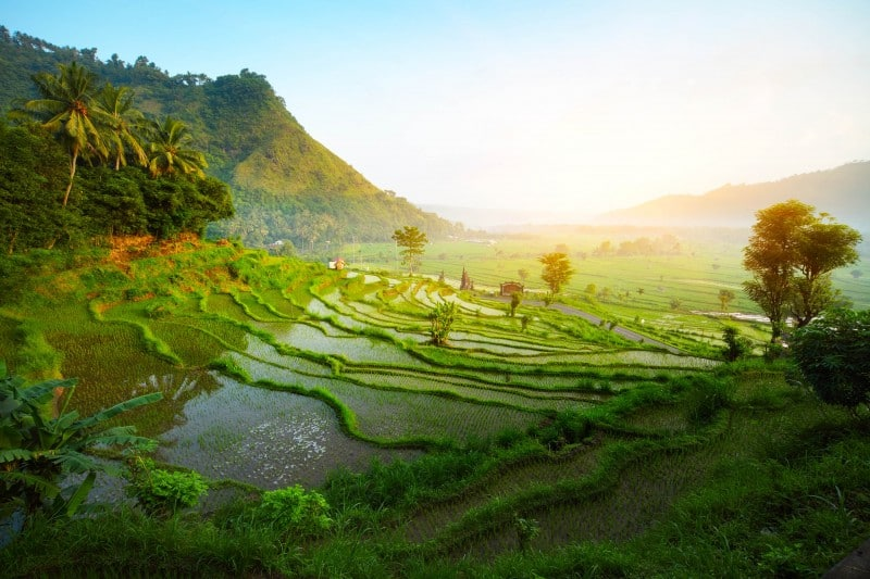 Bali, Indonesia - Global Storybook
