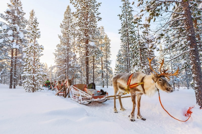 Finland for the first-timers - Global Storybook