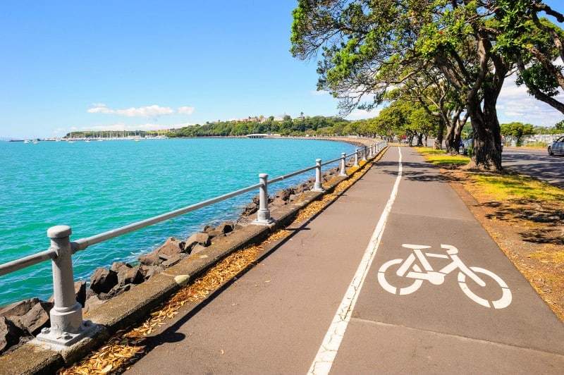 Tamaki Drive Coastline, Auckland, New Zealand - Global Storybook