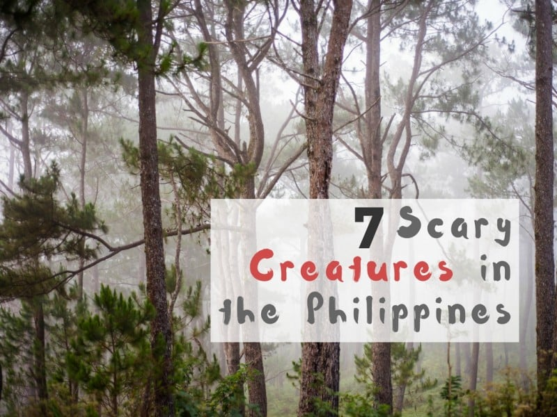 7 Scary Creatures in the Philippines - Global Storybook