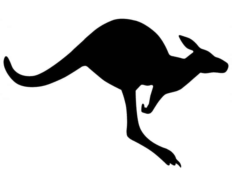 Kangaroo, Australia - Global Storybook