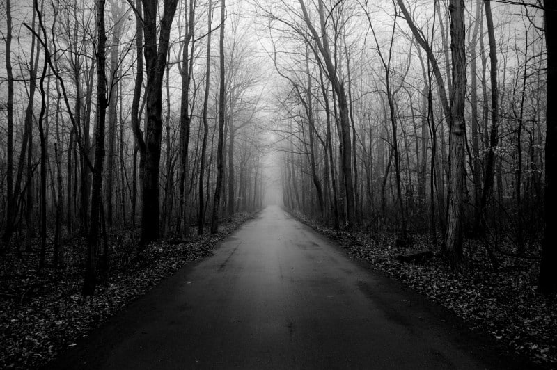 secluded road