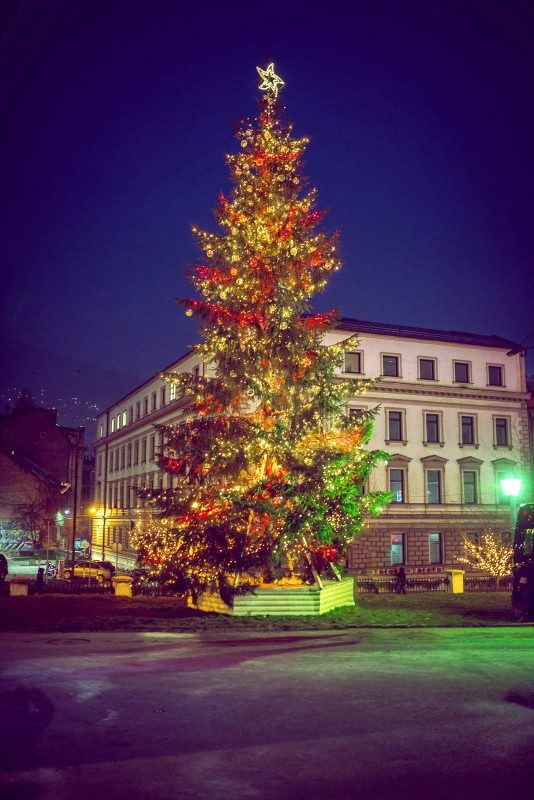 Christmas Tree, Sarajevo, Bosnia - Global Storybook