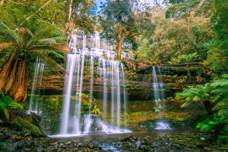 Russell Falls, Mount Field National Park, Tasmania, Australia - Global Storybook