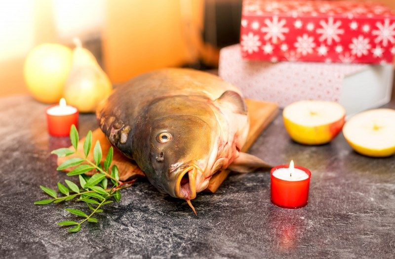 Whole carp on the kitchen table, traditional fish for Czech Christmas - Global Storybook