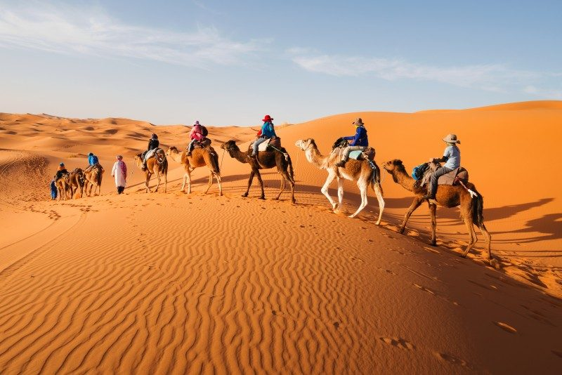 Caravan in Sahara, Morocco - Global Storybook