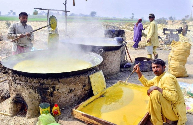 Extracting sugarcane juice and boiling it to prepare treacle (Gur) using old traditional methods, in Larkana, Pakistan - Global Storybook